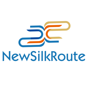 New Silk Route Digital - Your China Expert